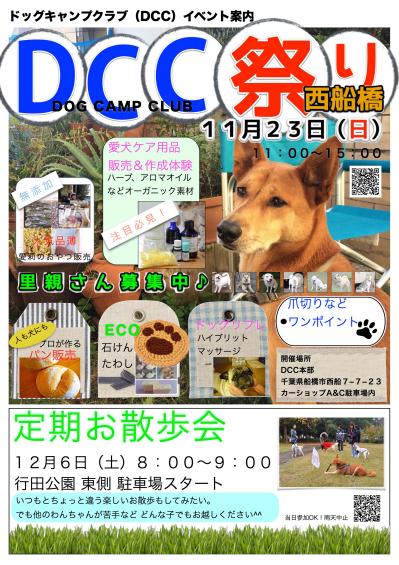 DCC祭りポスター_Fotor