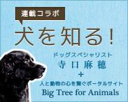 banner-inuwoshiru-185x147.jpg