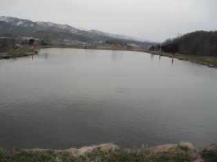 2012-04-29-01.jpg