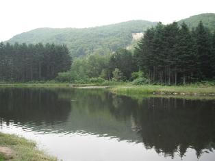 2012-07-22-07.jpg