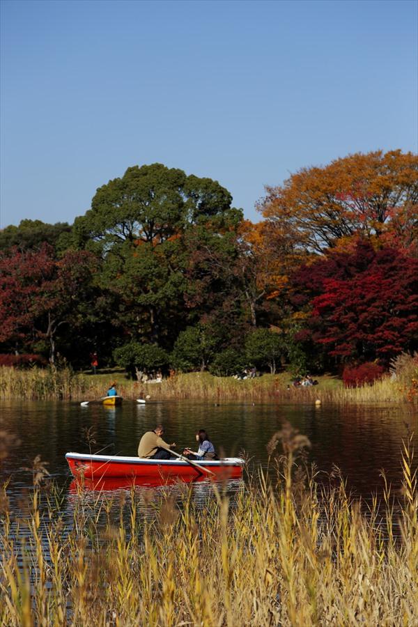 昭和公園0106