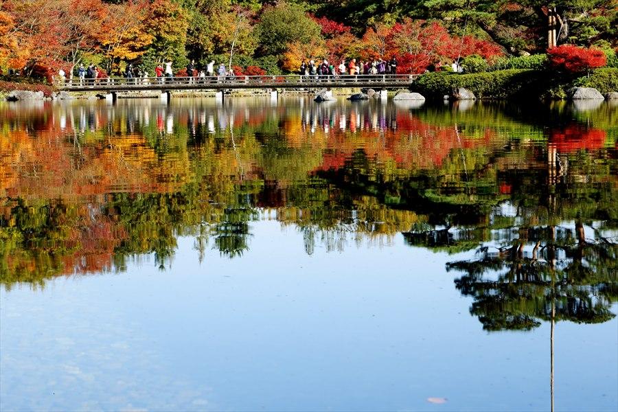 昭和公園0401