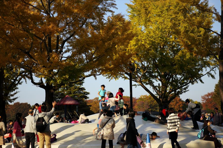 昭和公園0702