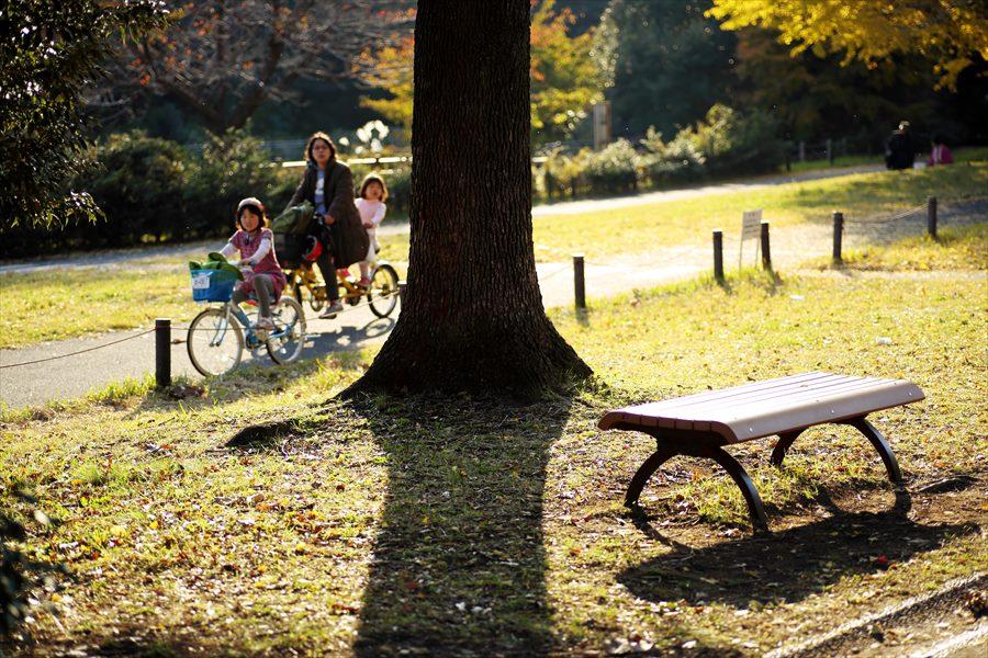 昭和公園0704