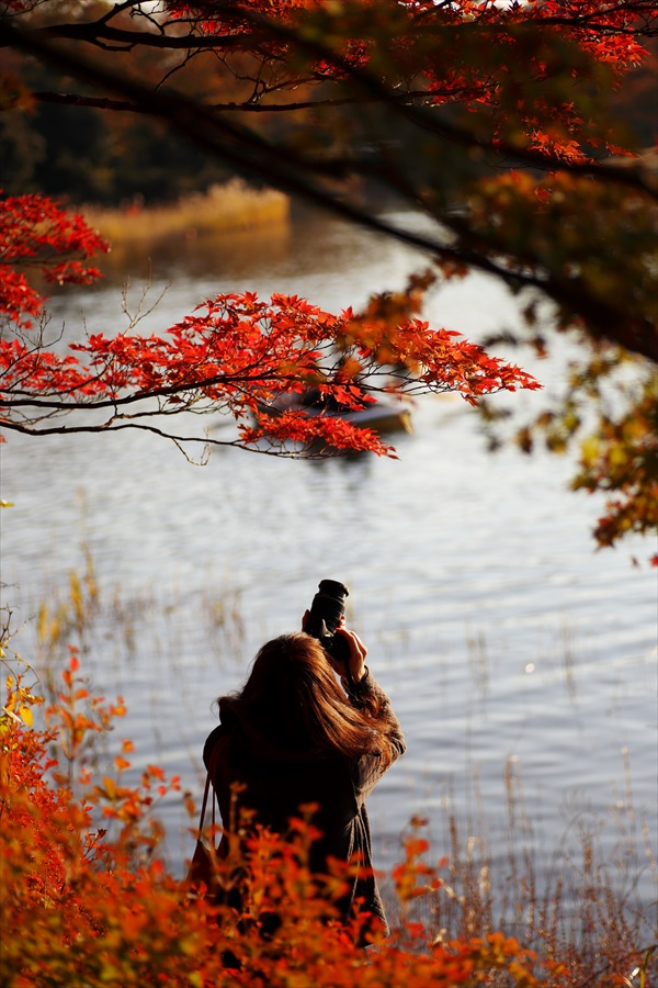 昭和公園0901