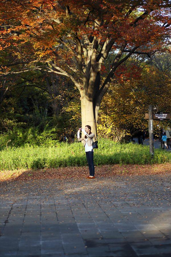 昭和公園0905