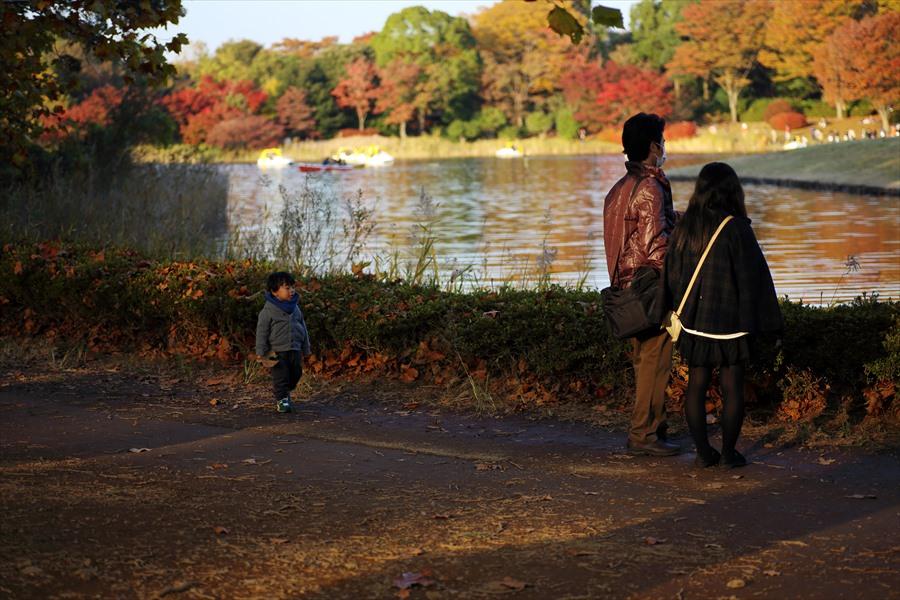 昭和公園0806
