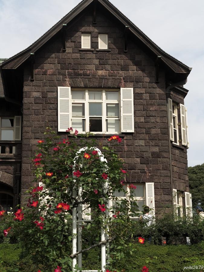 古河庭園バラ0204