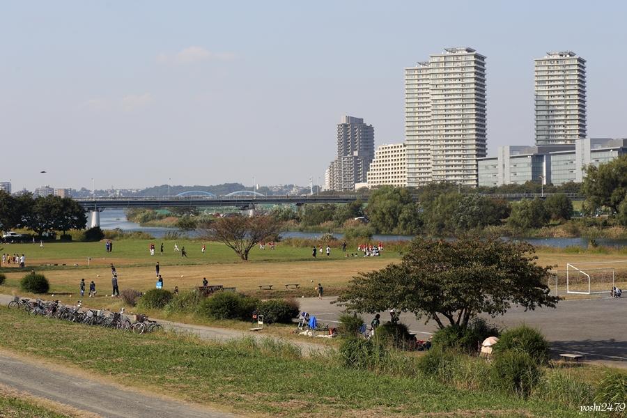 多摩川0101