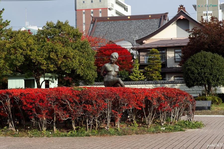 仙台紅葉0203