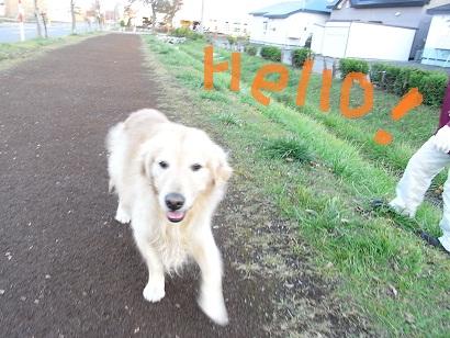 2010_1028_162038-RIMG0078.jpg