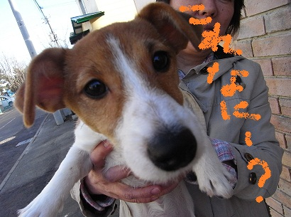 2011_0404_165351-RIMG0039.jpg