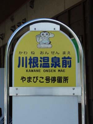 2010101107.jpg