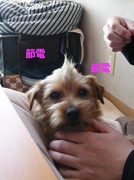 2011_0319_092132-P1050186a.jpg