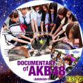 DOCUMENTARY OF AKB48(AKB48+1)