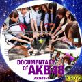 DOCUMENTARY OF AKB48(AKB48+1)(BD版)