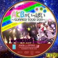 AKBがいっぱい~SUMMER TOUR2011~disc.1