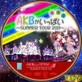 AKBがいっぱい~SUMMER TOUR2011~disc.6