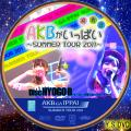 AKBがいっぱい~SUMMER TOUR2011~disc.10