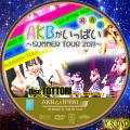AKBがいっぱい~SUMMER TOUR2011~disc.11