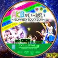 AKBがいっぱい~SUMMER TOUR2011~disc.13