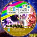 AKBがいっぱい~SUMMER TOUR2011~disc.15