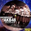 DOCUMENTARY of AKB48 Show must go on disc.1