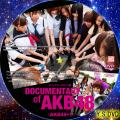 DOCUMENTARY of AKB48 Show must go on disc.2