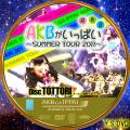 AKBがいっぱい~SUMMER TOUR 2011~DISC.11 ver.2