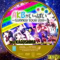 AKBがいっぱい~SUMMER TOUR 2011~DISC.15 ver.2