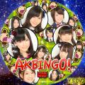 AKBINGO ver.3(DVD版)