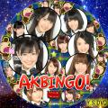 AKBINGO ver.4(DVD版)