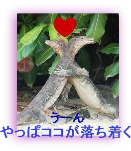 imagesCAEKSB73.jpg