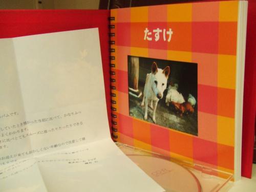 santafe+life+009_convert_20110916074944.jpg