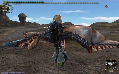 猟団シクレ02