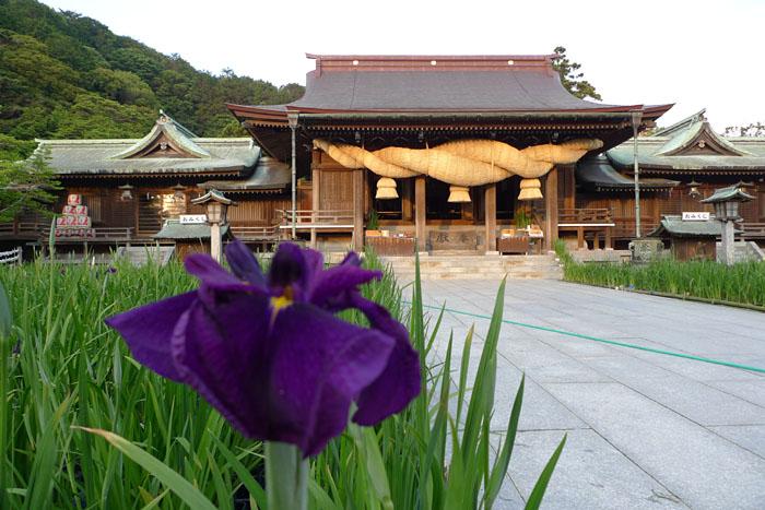 福岡県 宮地嶽神社 10
