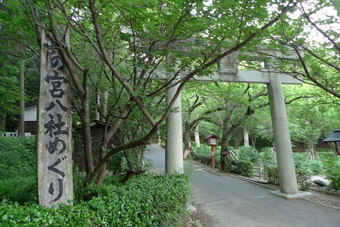 福岡県 宮地嶽神社 30