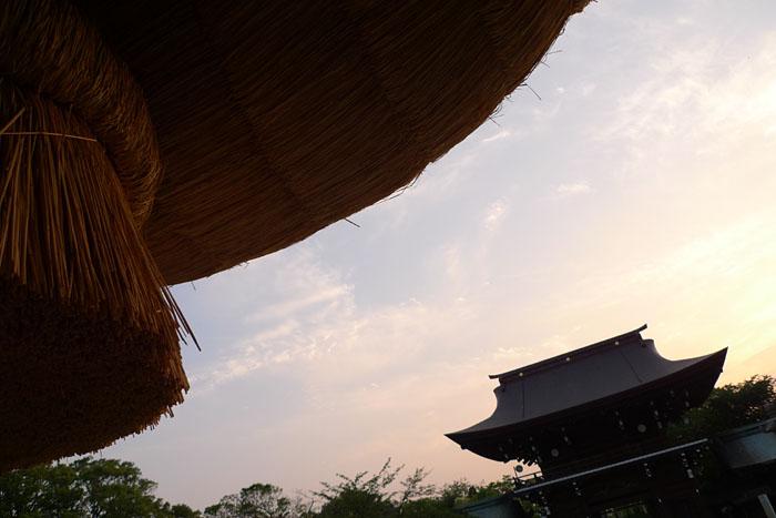 福岡県 宮地嶽神社 22