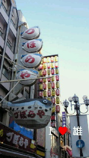 NEC_0947.jpg