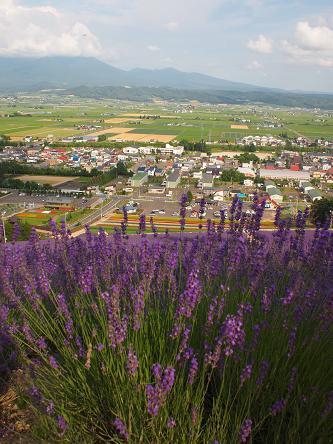 furano garden-2