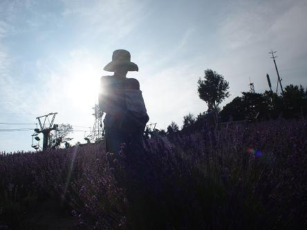 furano garden-1