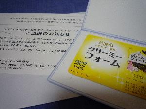 P1030667.jpg