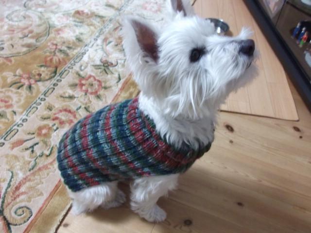 にっこのセーター