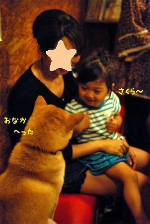 DSC_0098-2.jpg