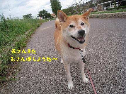 IMG_4731-2.jpg