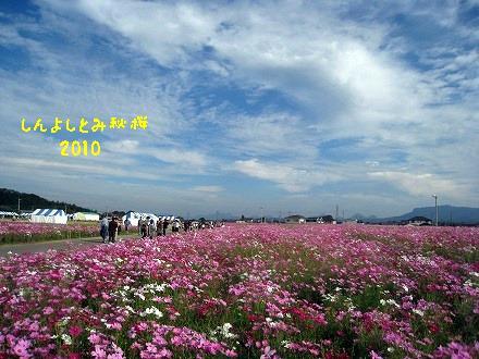 IMG_5343-2.jpg