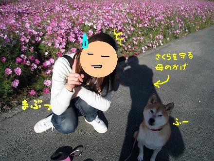 IMG_5815-2.jpg