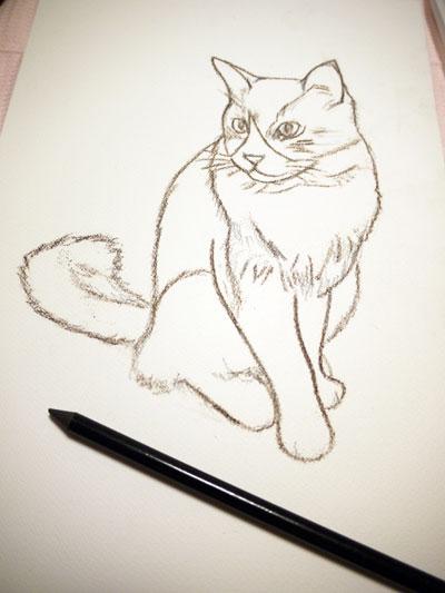 sketchmaron1.jpg
