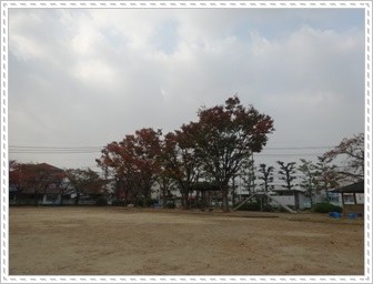 DSC01836_20131107235436cfe.jpg