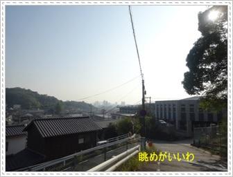 DSC01874_20131108231154f13.jpg